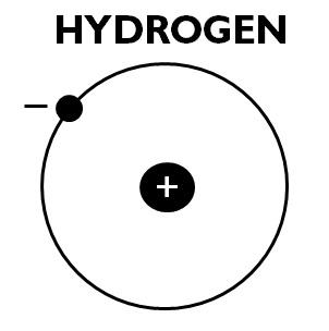 HYDROGEN anatomy