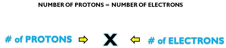 PROTON NEUTRON ELECTRON X